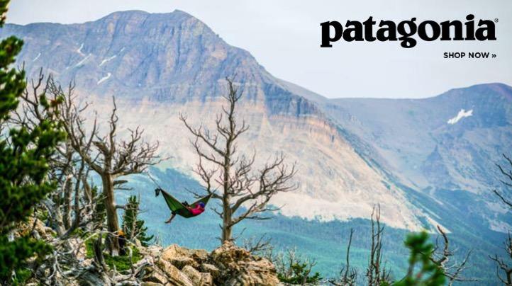 Patagonia brand drawing