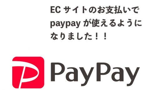 ECサイトでpaypay決済できます